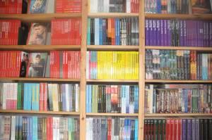 Schwule Literatur aus dem Himmelstürmer Verlag