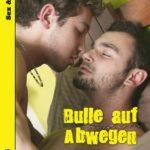 Bulle auf Abwegen | Himmelstürmer Verlag