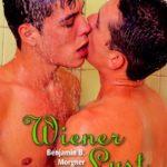 Wiener Lust | Himmelstürmer Verlag